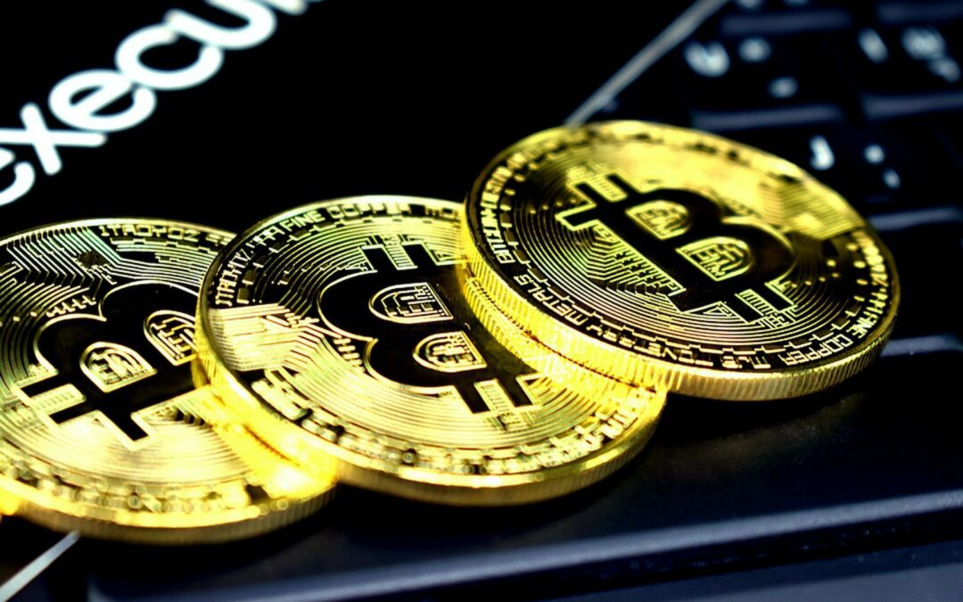 Blockchain & Cryptoassets growth indicators